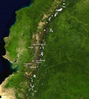 Ecuador - Reading Grass Paramo3