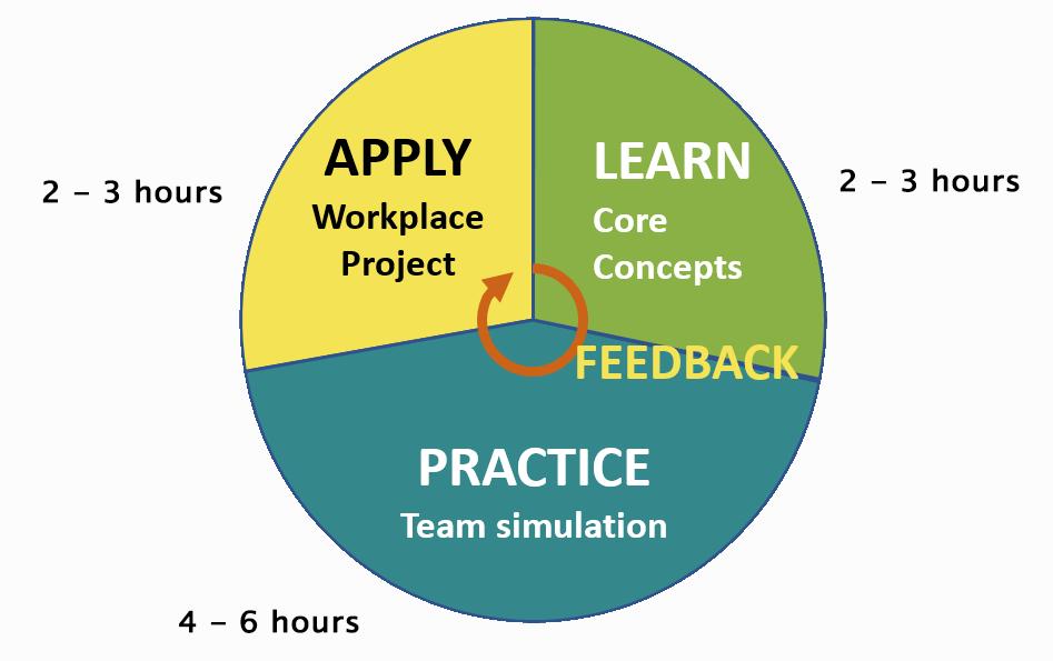 Apply Learn Practice Pie Chart